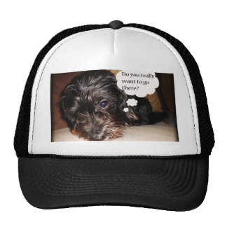 Do you Really want to go there Mesh Hats