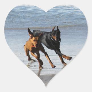 Doberman and Rhodesian Ridgeback - Frisbee Play Heart Sticker