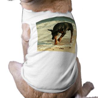 Doberman at the Beach Painting Image Sleeveless Dog Shirt