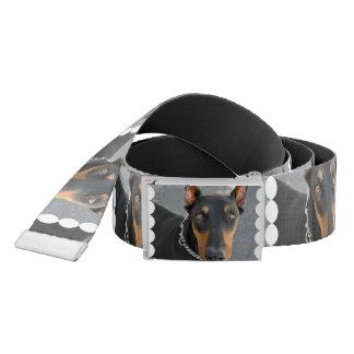 Doberman Pinscher Dog Belt