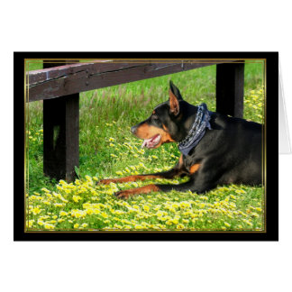 Doberman Pinscher Notecard