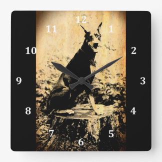 Doberman Pinscher Vintage Old Photo Square Wall Clock