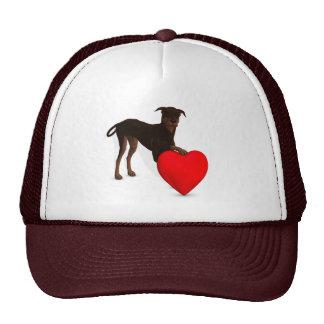 Doberman Pinscher With Heart Cap