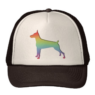 Doberman Rainbow Hats