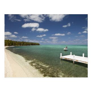 Dock at Half Moon Caye Natural Monument Postcard