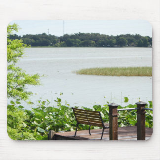 Dock on Lake Hollingsworth Mouse Pad