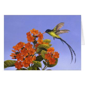 Doctorbird - National bird of Jamaica Card