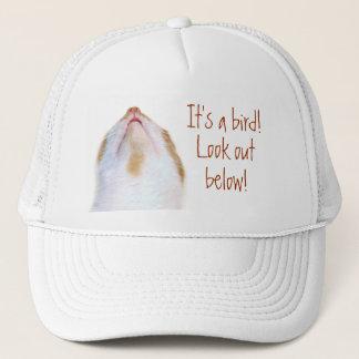 Dodge bird poop trucker hat