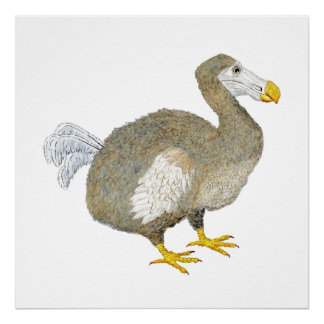 Dodo Bird Artwork Poster