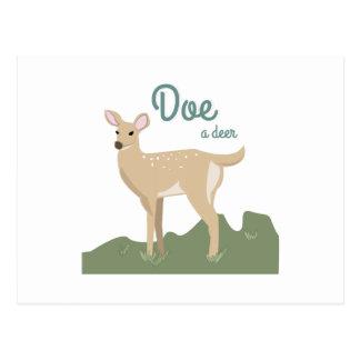 Doe A Deer Postcard