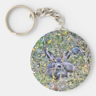 Doe deer and fawns basic round button key ring