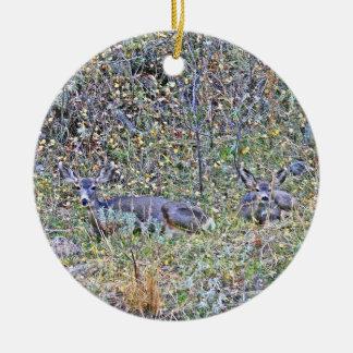 Doe deer and fawns ceramic ornament