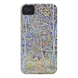 Doe deer and fawns iPhone 4 case