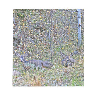 Doe deer and fawns notepad