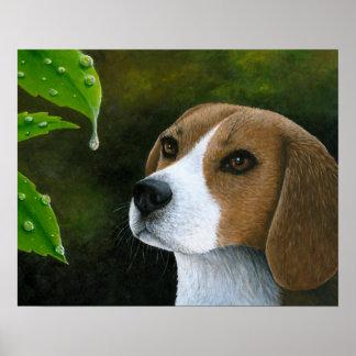 Dog 116 Beagle Poster