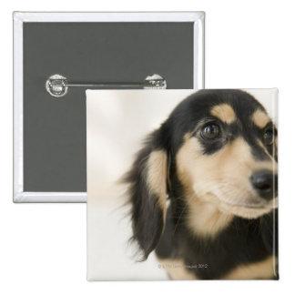 Dog 15 Cm Square Badge
