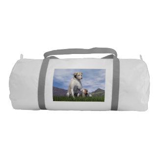 Dog and cat friendship gym bag