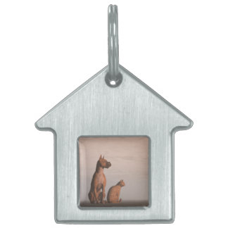 Dog and cat friendship pet tag