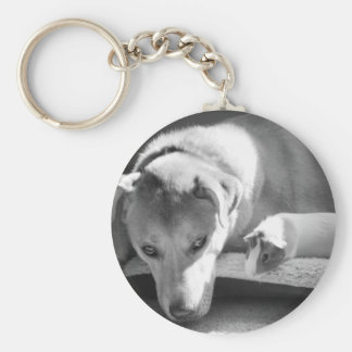 Dog and Guinea Pig Keychains