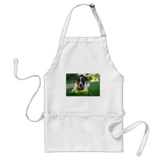 Dog and His Toy Bone Standard Apron