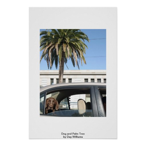 Dog and Palm Tree Posters