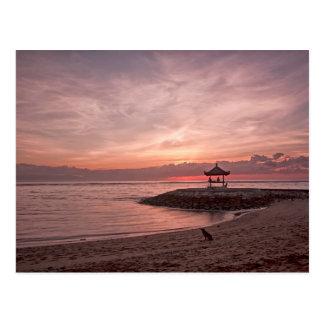 Dog at sunrise postcard