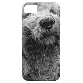 dog barely there iPhone 5 case