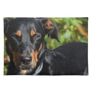 Dog Beauceron Placemat
