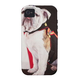 dog bulldog Navy official mascot Case For The iPhone 4