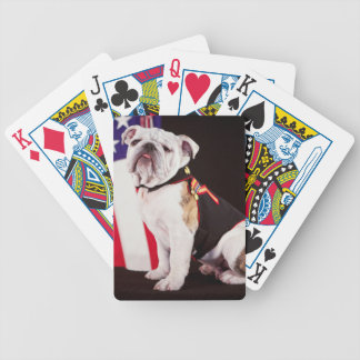 dog bulldog Navy official mascot Poker Deck