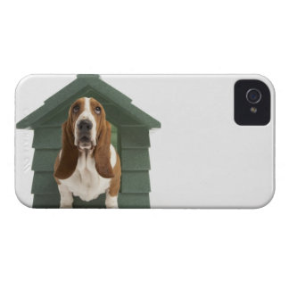 Dog by doghouse iPhone 4 Case-Mate cases