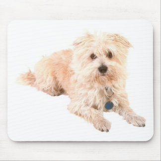 Dog Canine pets animals pet lovers kennels Mouse Pad