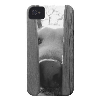 dog case iPhone 4 Case-Mate cases