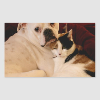 Dog Cat Cuddle Rectangular Sticker