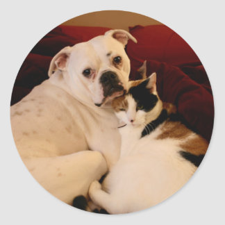 Dog Cat Cuddle Round Sticker