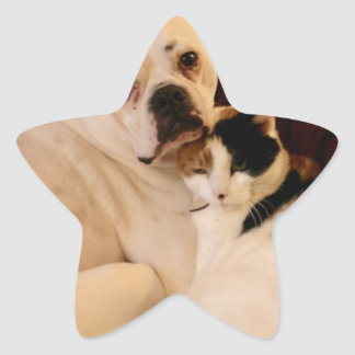 Dog Cat Cuddle Star Sticker