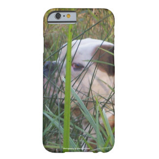 Dog Cell Phone and Ipad case