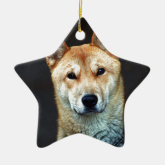 dog ceramic star decoration