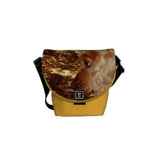 Dog Cocker Spaniel Commuter Bags