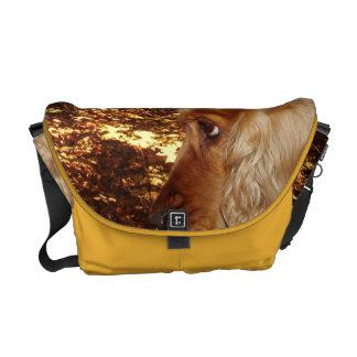 Dog Cocker Spaniel Courier Bags