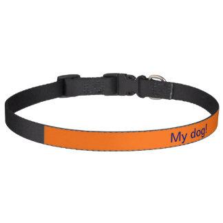 Dog Collar Orange