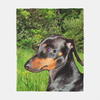 Dog Dachshund Doxie Fleece Blanket