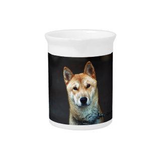 dog drink pitchers