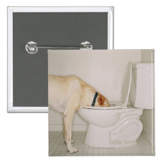 Dog drinking out of toilet 15 cm square badge