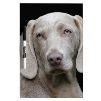 dog dry erase board