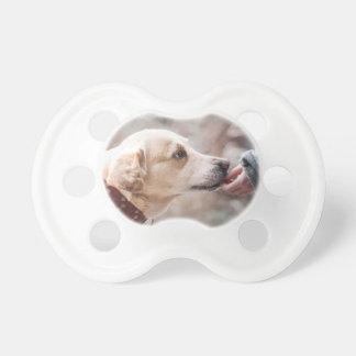 dog dummy