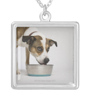 Dog eating from bowl pendants