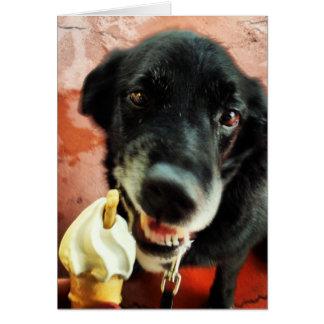 Dog Eating Ice Cream Card