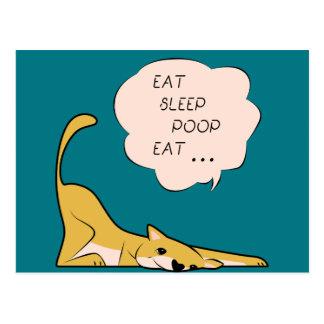 dog_eatsleeppoop postcard