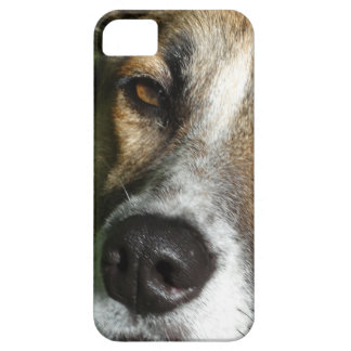 Dog Face Close Up iPhone SE + iPhone 5/5S, Barely iPhone 5 Case
